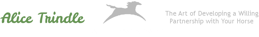 T&T Horsemanship